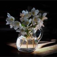 Нежный аромат... :: Наталья Rosenwasser