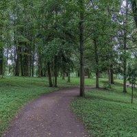 Дворцовый парк в Гатчине. :: Сергей Исаенко