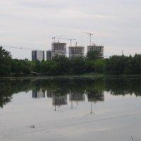 Небоскрёбы над прудом :: Дмитрий Никитин