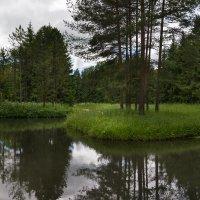 Екатерининский парк :: Сергей Залаутдинов