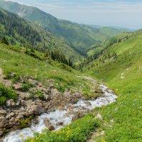 в ущелье Горельник - Поздравляю всех с днем Фотографа !!! :: Горный турист Иван Иванов