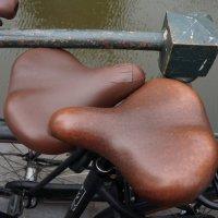 В Амстердаме ... :: Алёна Савина