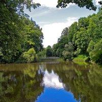 Большой пруд в Спасском :: Елена Кирьянова