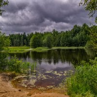 Холодное лето семнадцатого года 2 :: Андрей Дворников