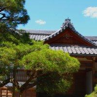 Где-то в Киото :: Ольга Крылова