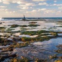 одинокий рыбак :: Валерий Цингауз