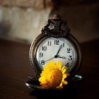 Время любить :: Валерьян Бек (Хуснутдинов)