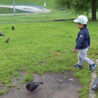 Малыш доволен, всех птичек разогнал. :: Татьяна Помогалова