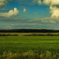 Кемеровская область, платное озеро :: Владимир Деньгуб