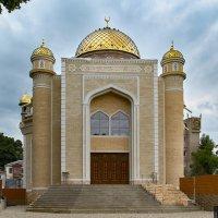 Кисловодская Соборная мечеть :: Николай Николенко