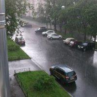 Дождливый день :: Svetlana Lyaxovich