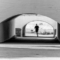 куда же он бежит ? :: sergio tachini