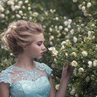 Розы :: Женя Рыжов