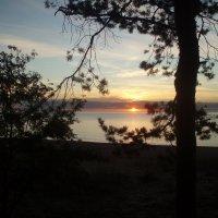 Vakaras prie Baltijos /  Saulkrasti (Latvia). Evening on the Baltic Sea. :: silvestras gaiziunas gaiziunas