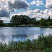 Рябь на воде. :: Anatol Livtsov