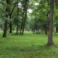 Атажукинский сад Кабардино-Балкарии :: Любовь ***