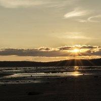 Закат солнца. :: Марина Никулина