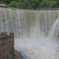 Водопад в Новом Афоне. :: Виктор Евстратов