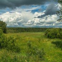 Поход в лес :: Владимир Деньгуб