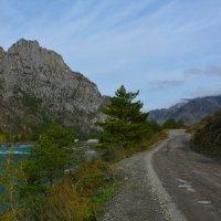 По дороге в Еланду. :: Валерий Медведев