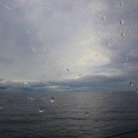 За окном дождливая Ладога... :: Tatiana Markova