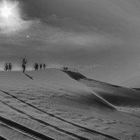 Долгая дорога в дюнах... :: Сергей Дабаев