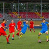 в борьбе за мяч. :: Tatyana Zholobova