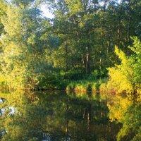 Летний вечер у реки :: Горкун Ольга Николаевна