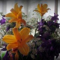 Цветы :: Агриппина