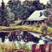 Спит тихий пруд,спят зелень и цветы. :: АЛЕКСАНДР СУВОРОВ