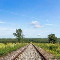 На линиях железной дороги... :: Юрий Стародубцев