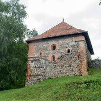 Башня :: Alena Cyargeenka