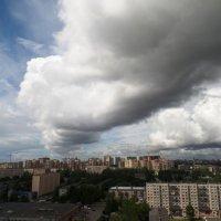 Питерский полдень. :: Марина Харченкова