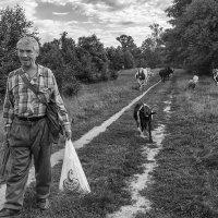 По пути домой.. :: Вадим Sidorov-Kassil