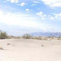 Песчаные дюны в Долине смерти :: Ольга Петруша