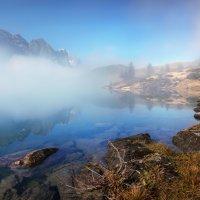 Туман - это красиво, Природой созданное диво :: Elena Wymann