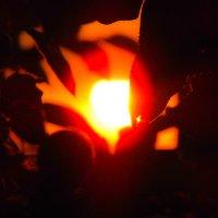 солнце на закате :: Юлия Денискина