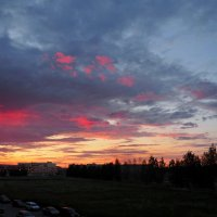 Из моего окна :: Софья Борисова