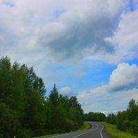 Дорожный пейзаж... :: Tatiana Markova