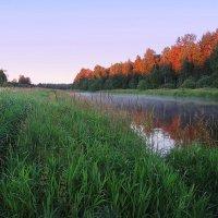 Туман вечерний виснет над рекой :: Павлова Татьяна Павлова