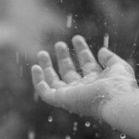 Летний дождь :: Ксения Александровна Николаева