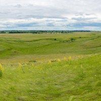 Панорама из 8 фото :: Alex Bush