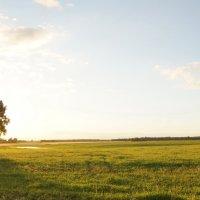 Запутавшееся солнце :: Николай Агапитов