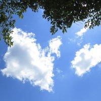 Светоскопия облака :: Валерий Дворников