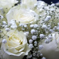 Свадебный букет :: Евгений Князев