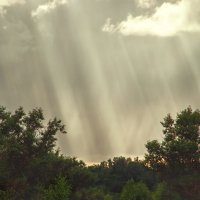 Там где идёт дождь. :: Анатолий. Chesnavik.