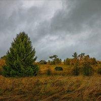 Пасмурный день и опустевшая деревня... :: Александр Никитинский