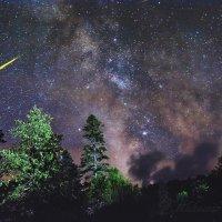 Ночь на Ауадхаре. :: Александр Криулин