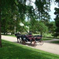 В Екатерининском парке :: марина ковшова