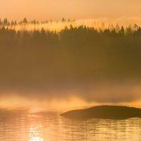 Туманные берега летней Ладоги :: Фёдор. Лашков